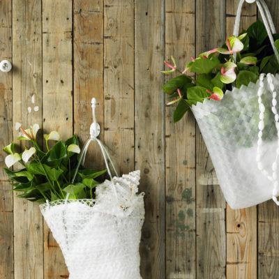 machen sie mehr aus ihrer pflanzen so viele m glichkeiten und so viel auswahl anthurium deutsch. Black Bedroom Furniture Sets. Home Design Ideas
