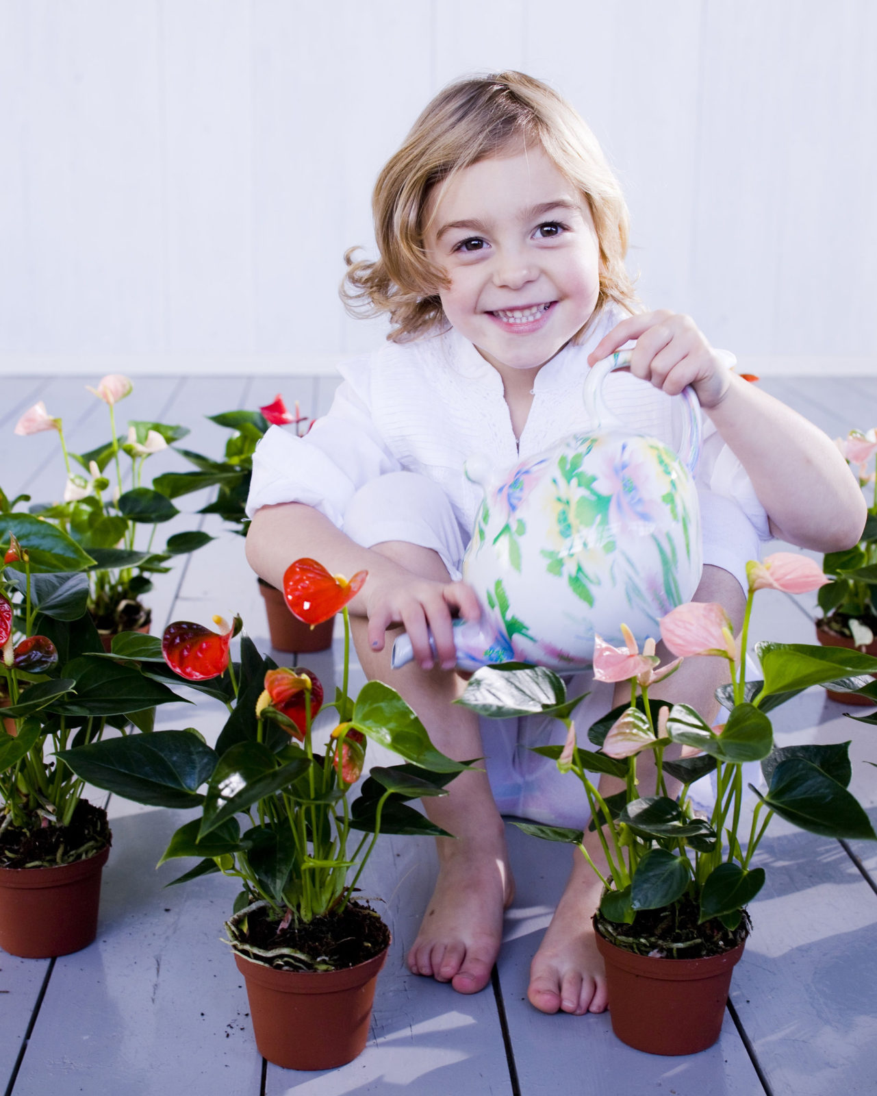 5 anthurium gift-giving days to note on your calendar