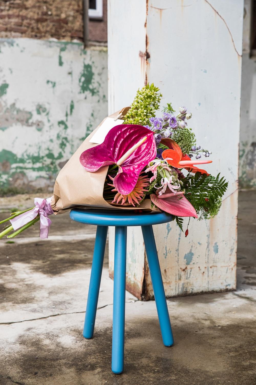 5 Anthurien Geschenktage zum Notieren für Ihren Kalender