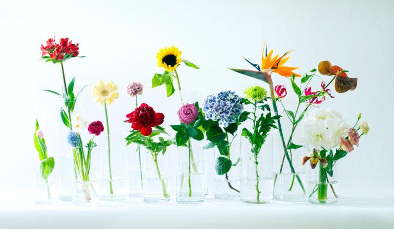 Blumenarrangements 2.0: So wird ein Bouquet besonders schön