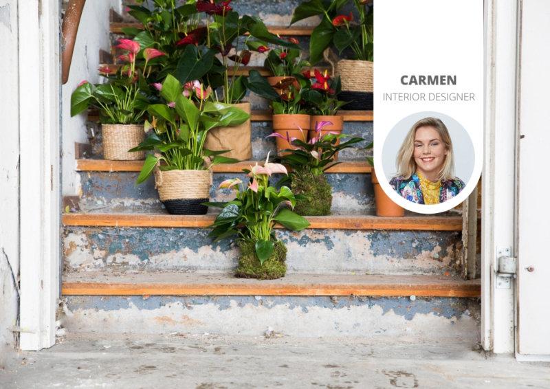 Dekorieren Sie Ihr Treppenhaus mit Pflanzen