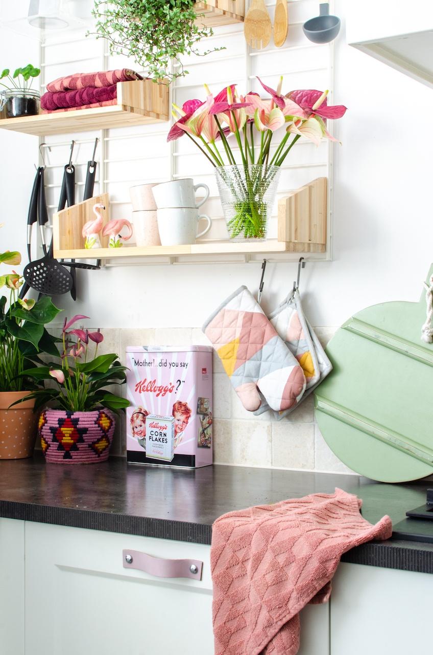 Schöne Accessoires und Pflanzen machen eine Küche noch einladender. Und Anthurien passen genau in die heutigen Küchentrends.