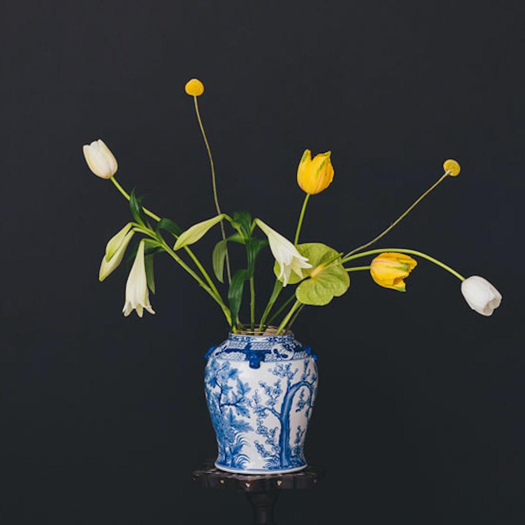 Kreieren Sie einen Sternbild-Blumenstrauß mit der Flower Constellations