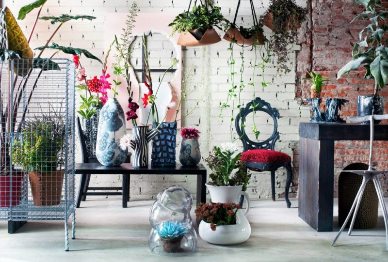 Carmen s about interior trends with flowers and plants anthurium
