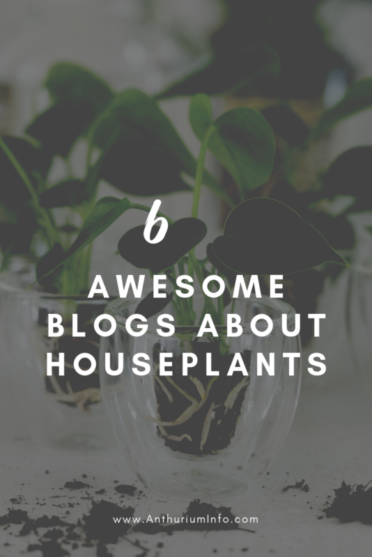 6 great blogs about plants
