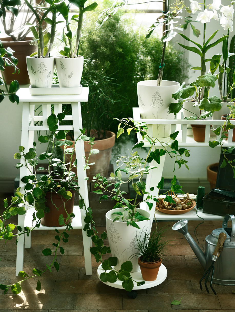 5 nifty plant stands for under €30