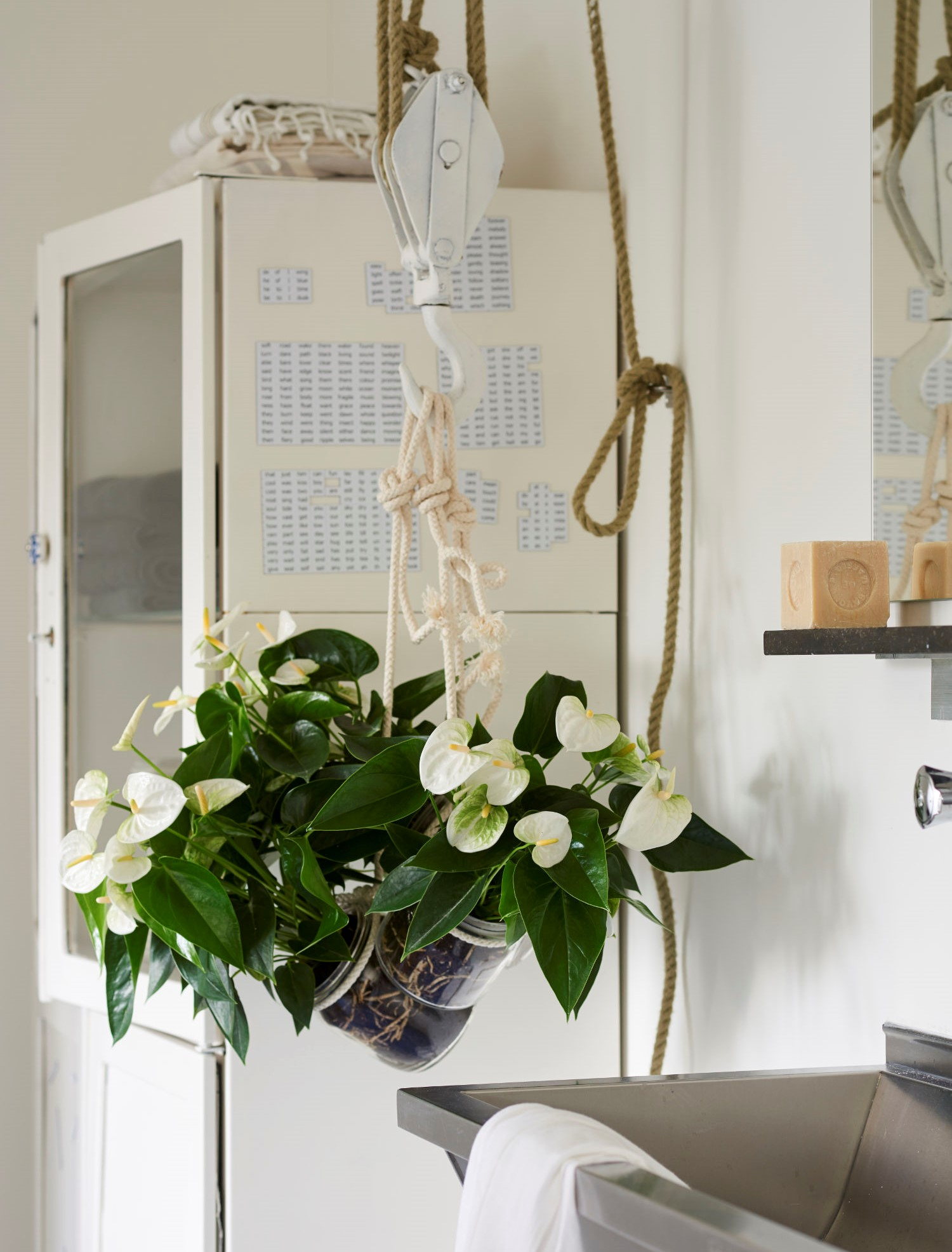 7 beautiful ways to display your plants in your apartment