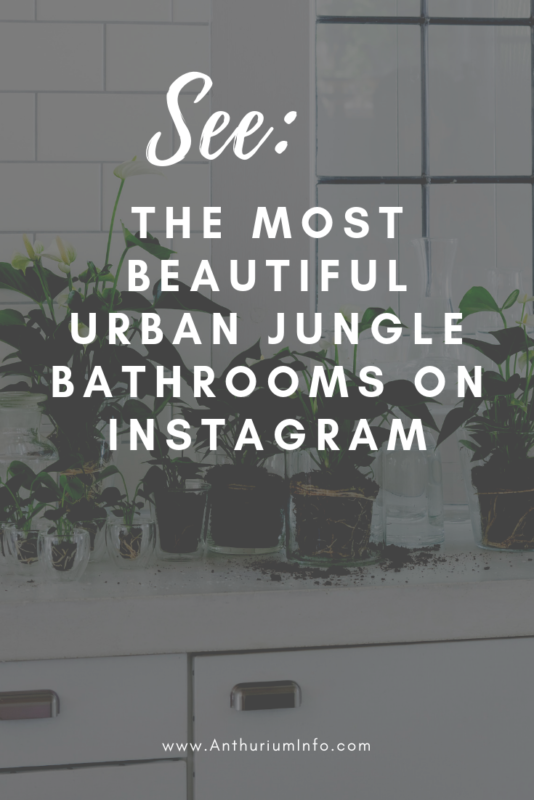 The most beautiful urban jungle bathrooms on Instagram