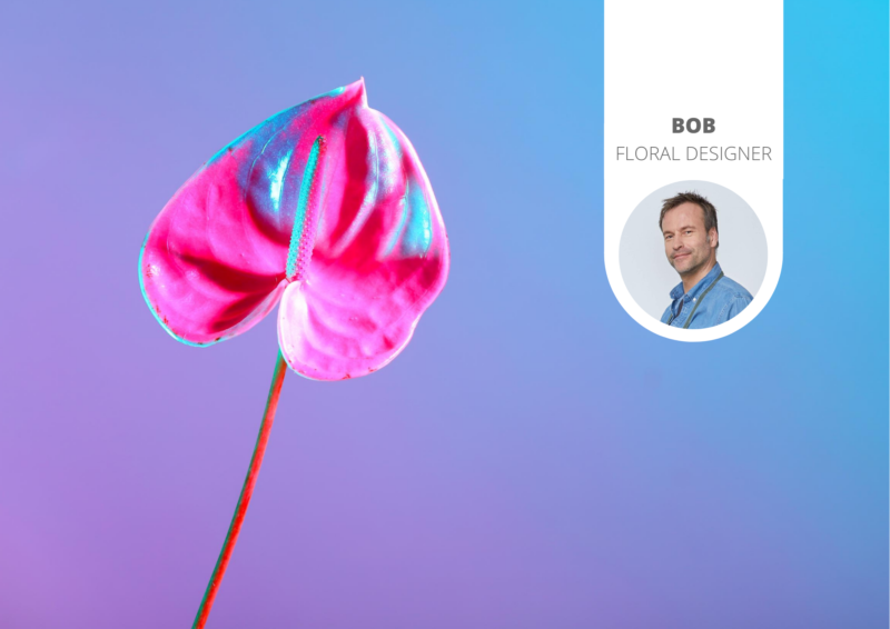 The newest floral trend: holographic Anthuriums