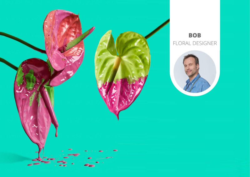 The newest floral trend: painted Anthuriums
