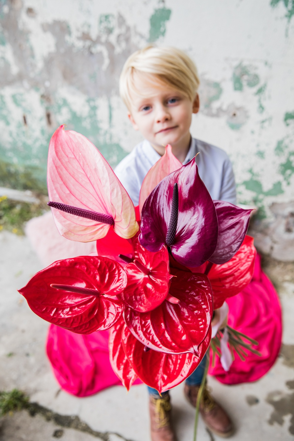 How to choose the most suitable Anthurium for your mother