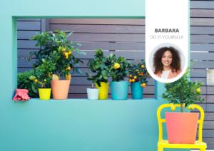 Comment réaliser un jardin vertical