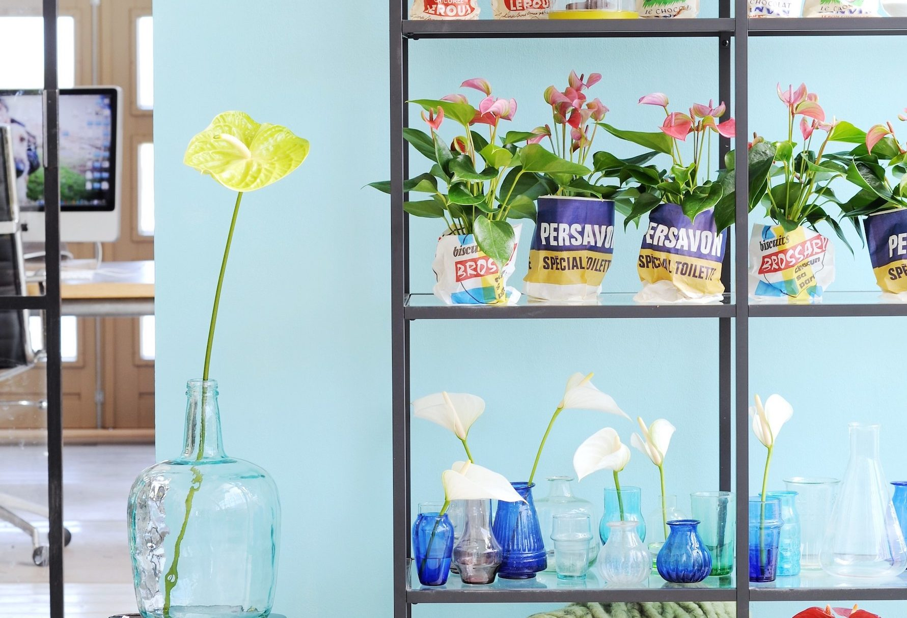 L'art floral avec des fleurs coupées d'anthurium : 3 idées