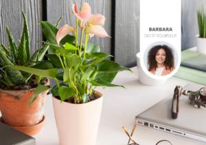 Pour ces raisons, il est recommandé de placer plus de plantes sur votre bureau
