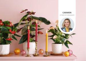 4 idées pour utiliser l'anthurium dans les décorations de Noël