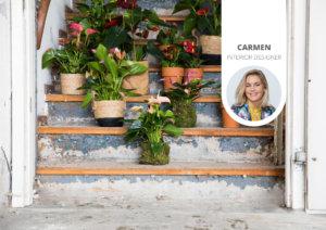 Décorez votre montée d'escalier avec des plantes