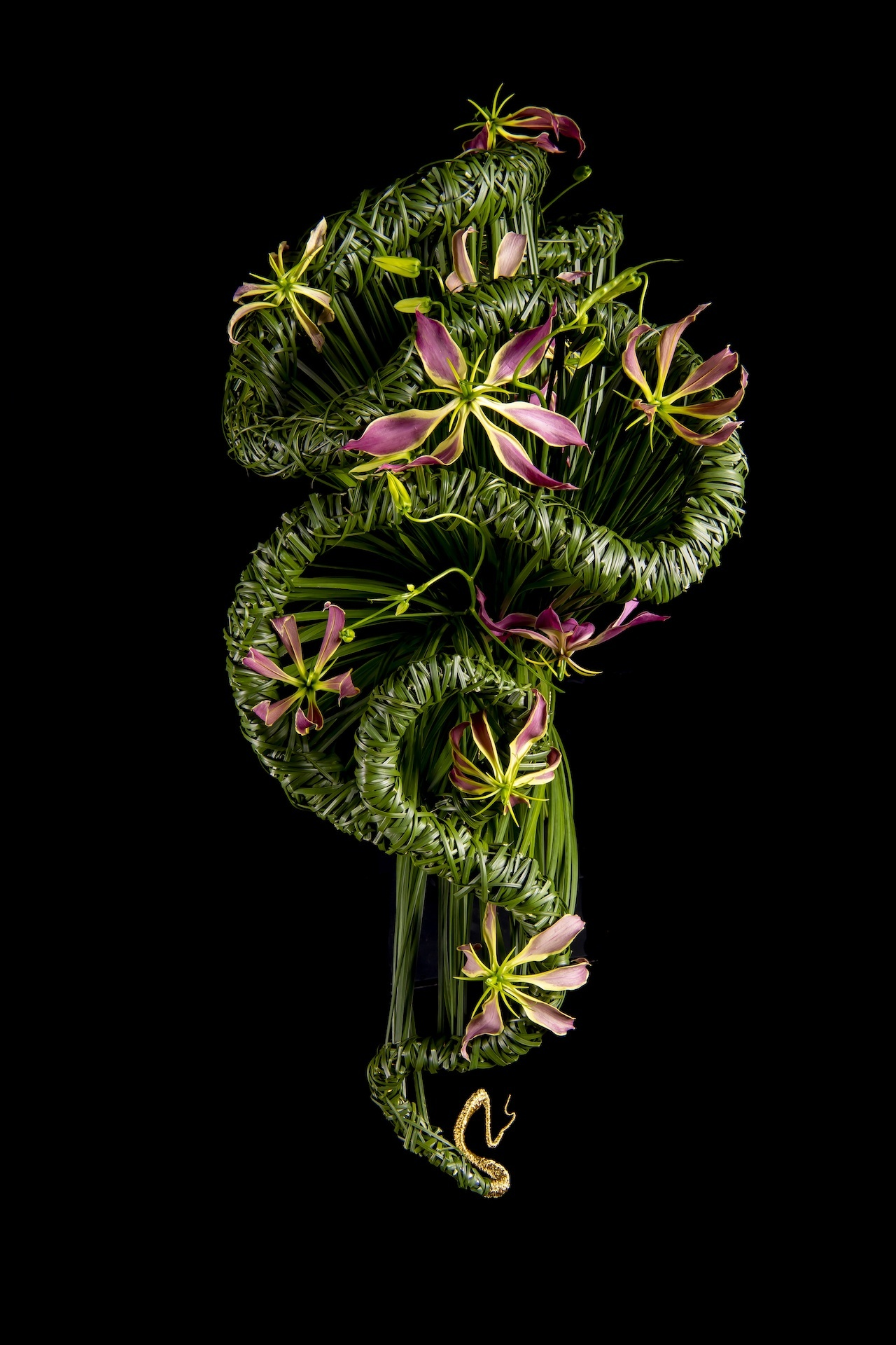créations avec des anthuriums par le maître fleuriste Hanneke Frankema