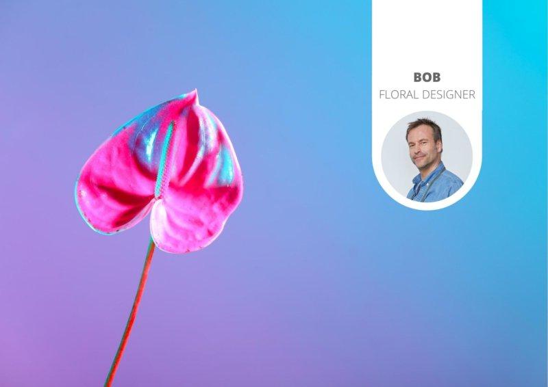La dernière tendance florale : les anthuriums teintés