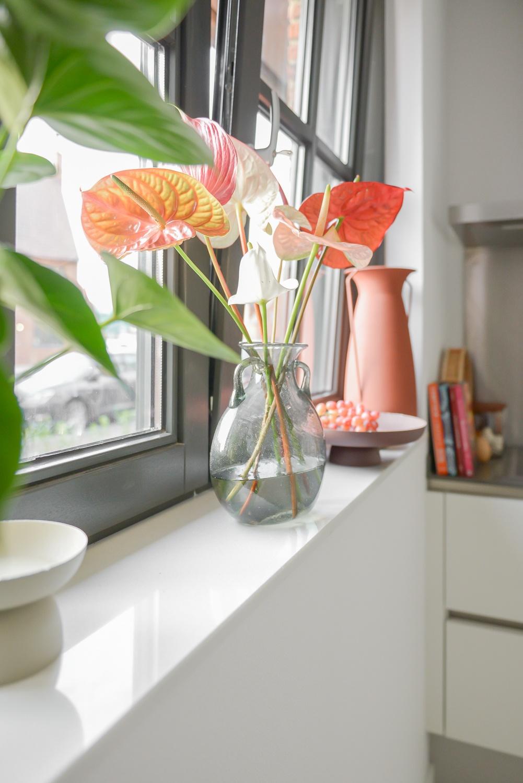 Voici comment Binti Home intègre des anthuriums dans son intérieur