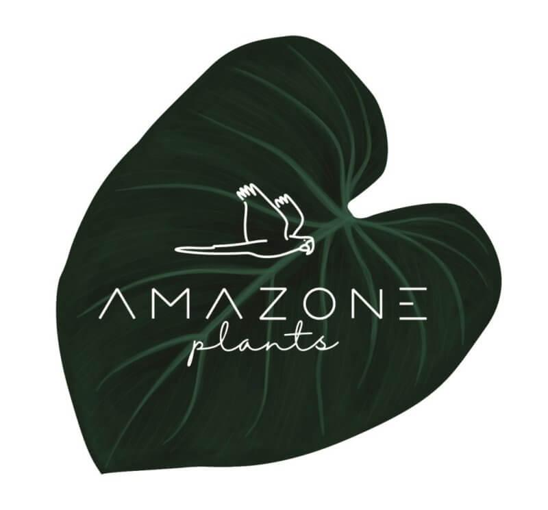 Amazone Plants