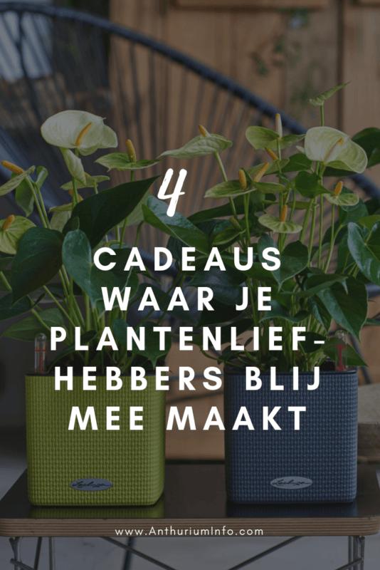 4 cadeaus waar je iedere plantenliefhebber blij mee maakt