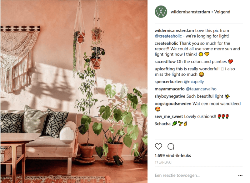 6 Instagram Accounts Full Of Inspiration For Plant Lovers