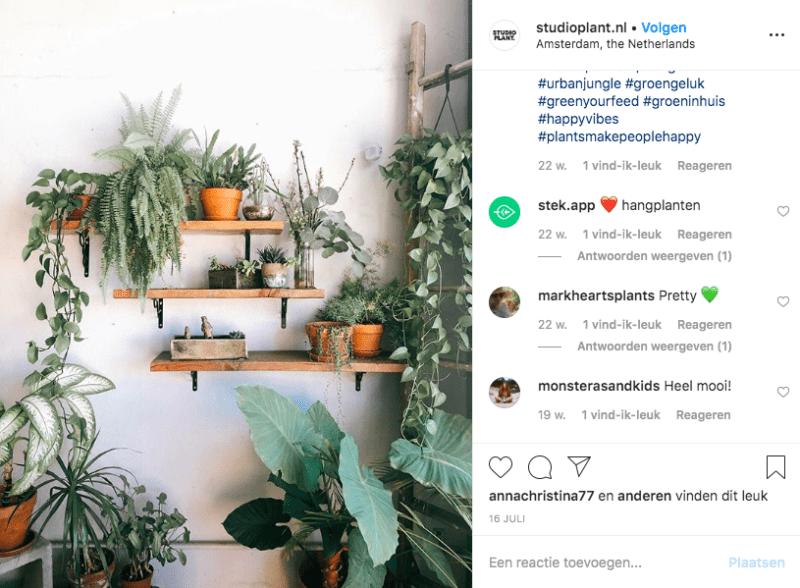 Groen-spiratie nodig? 7 leuke blogs over planten op een rij