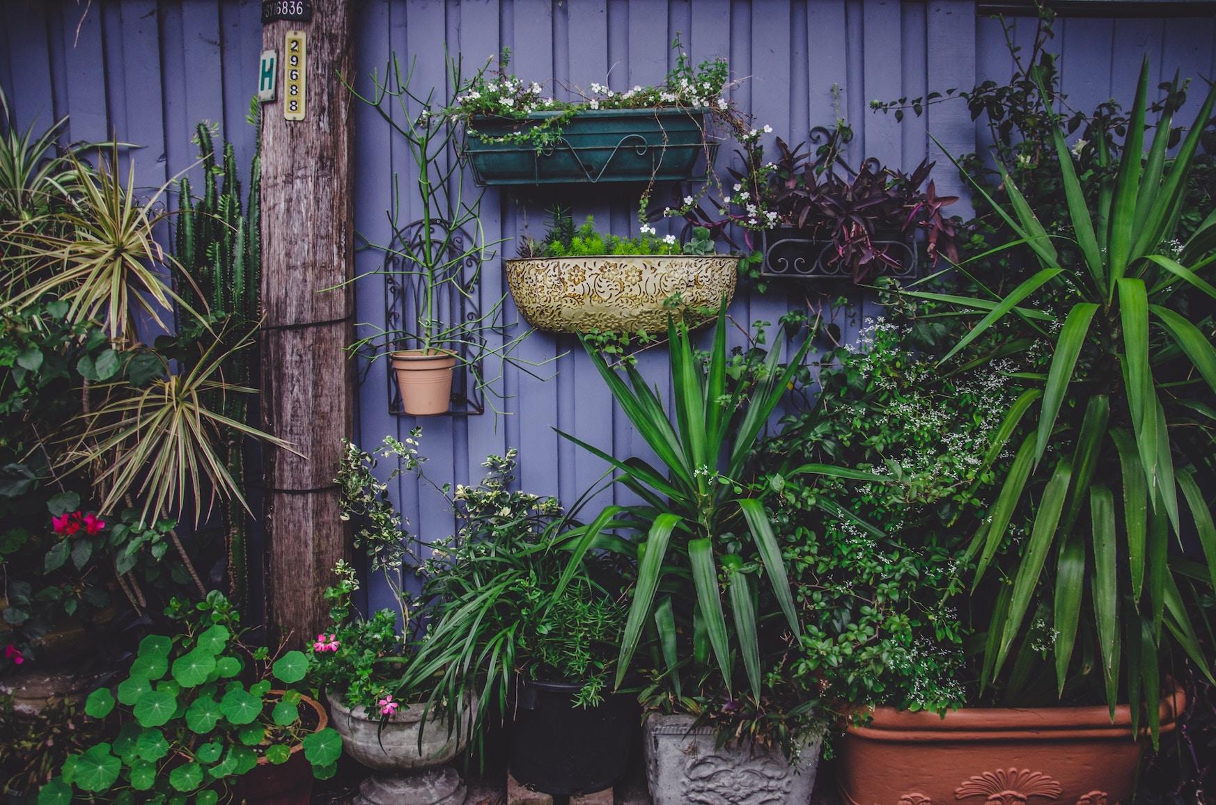 Tuinieren Op Balkon : Verticaal tuintje op balkon tuin verticaal tuinieren tips diy