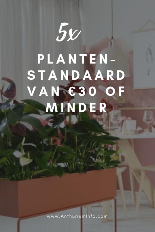 5x gave plantenstandaard van €30 of minder
