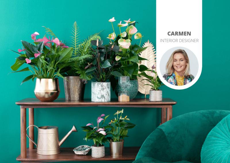 Geef je interieur een kleurrijke exotische 'look' met planten om de herfst mee op te fleuren