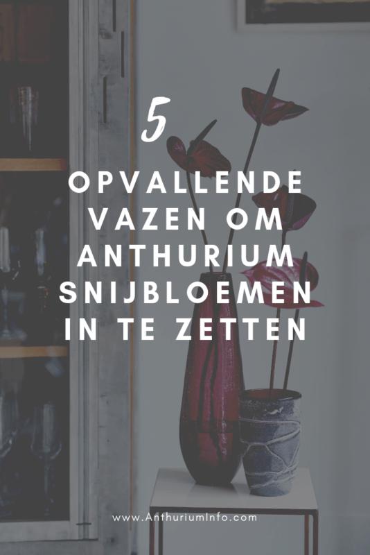 5 opvallende vazen om anthurium snijbloemen in te zetten