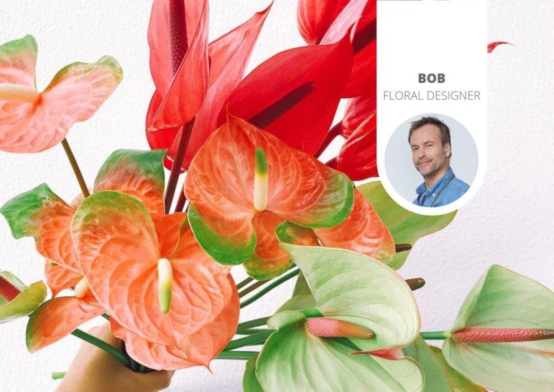 Waar kun je anthurium bloemen online bestellen?
