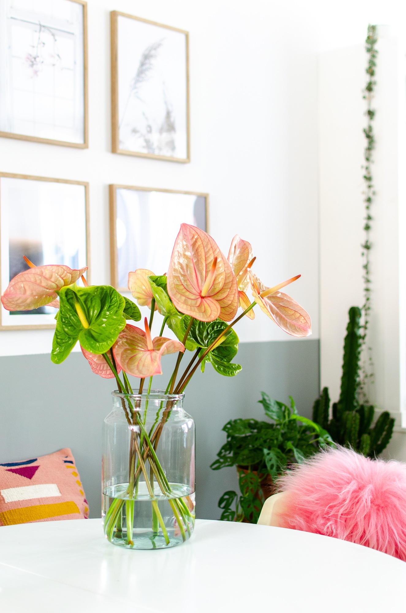 Making a bouquet using cut Anthurium flowers: tips & inspiration
