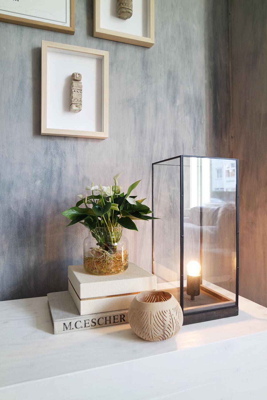 Anthurium plant op water in het interieur van Dutchguy