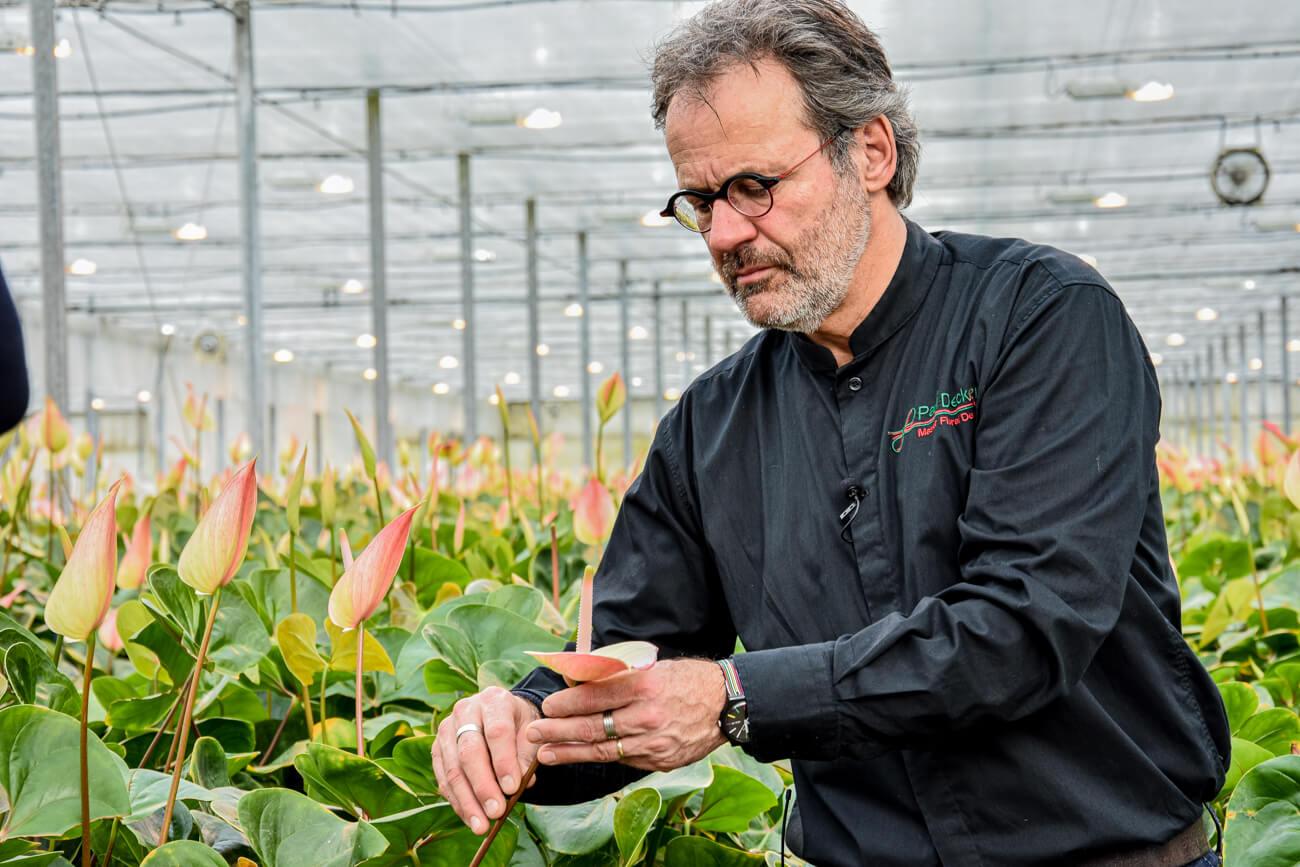 Floral Designer Paul Deckers laat plannen zien aan anthuriumkwekers02