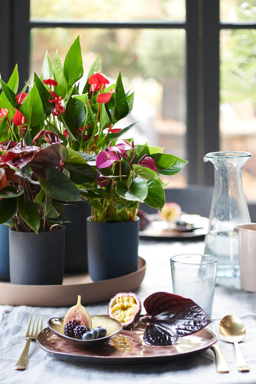 3 tips voor een mooi gedekte paastafel vol bloemen