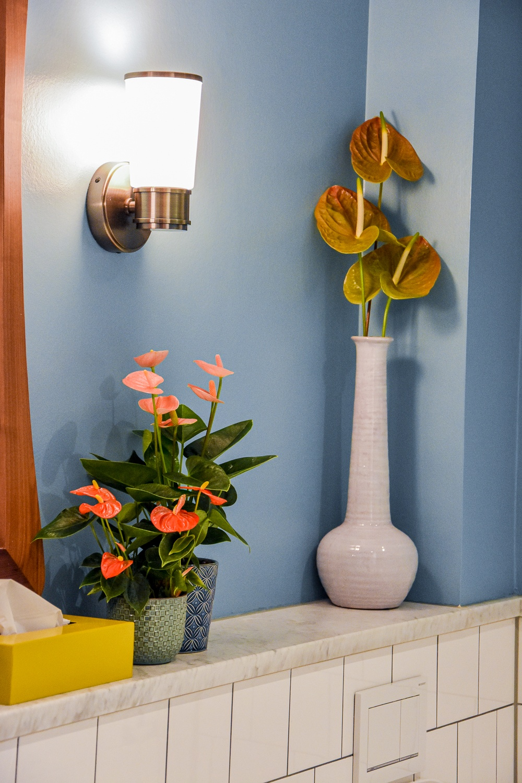 De badkamertrends van 2021: donkere kleuren, planten en hout