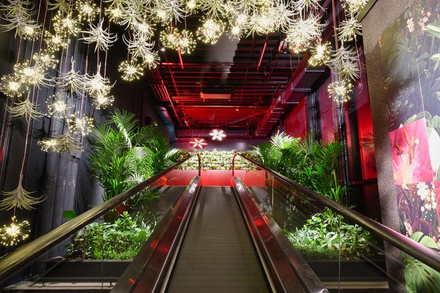 FloriWorld: een must see attractie voor bloemen en plantenliefhebbers!